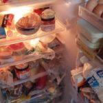 【一人暮らしの冷蔵庫】 おすすめのライフスタイル別モデルはこれ!